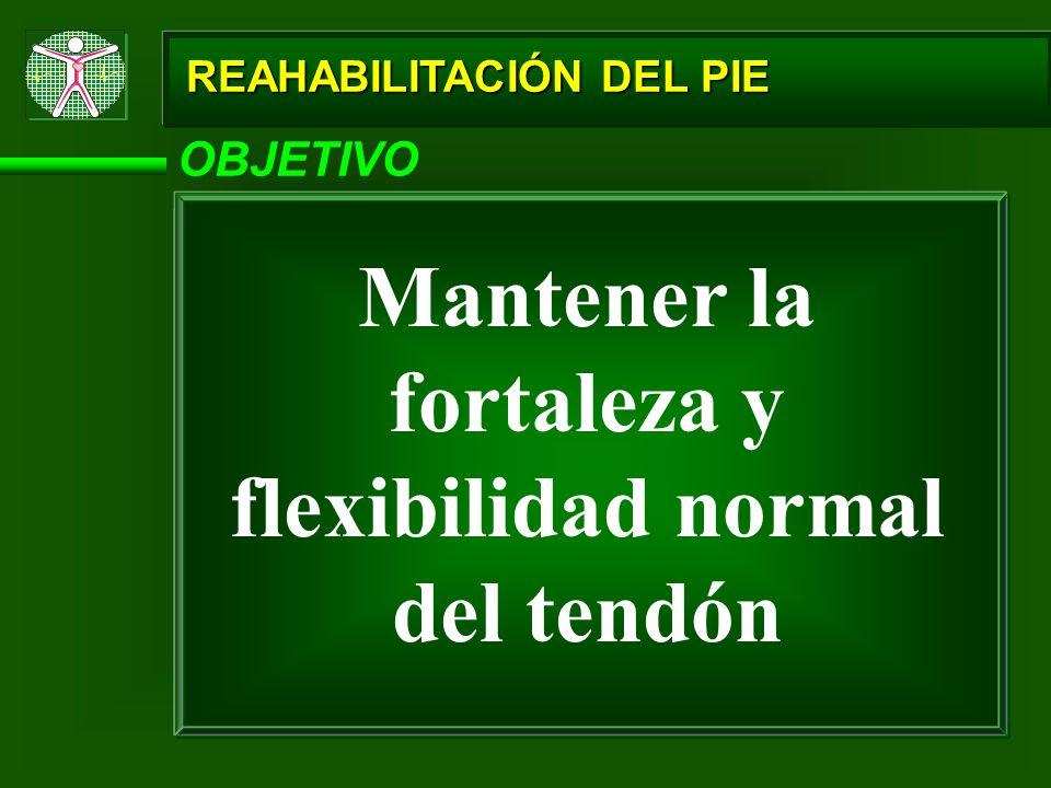 REAHABILITACIÓN DEL PIE OBJETIVO Mantener la fortaleza y flexibilidad normal del tendón