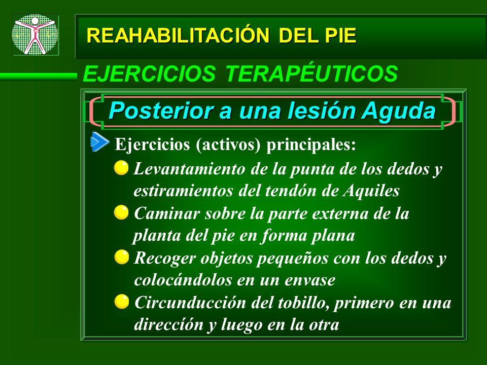 REAHABILITACIÓN DEL PIE EJERCICIOS TERAPÉUTICOS Posterior a una lesión Aguda Ejercicios (activos) principales: Levantamiento de la punta de los dedos