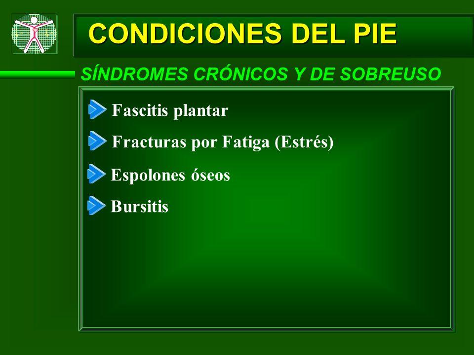 CONDICIONES DEL PIE SÍNDROMES CRÓNICOS Y DE SOBREUSO Fascitis plantar Fracturas por Fatiga (Estrés) Espolones óseos Bursitis
