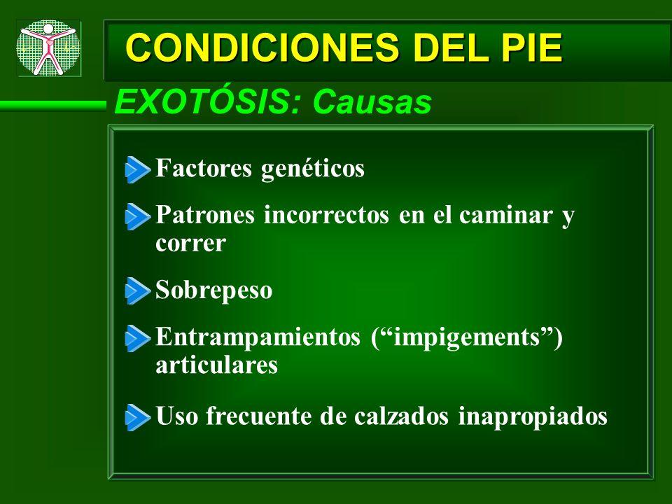 CONDICIONES DEL PIE Factores genéticos Patrones incorrectos en el caminar y correr Sobrepeso Entrampamientos (impigements) articulares Uso frecuente d