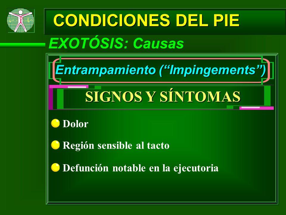 CONDICIONES DEL PIE EXOTÓSIS: Causas Entrampamiento (Impingements) SIGNOS Y SÍNTOMAS Dolor Región sensible al tacto Defunción notable en la ejecutoria