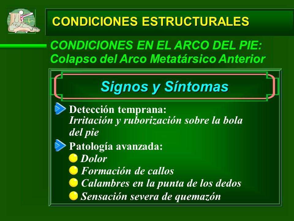 CONDICIONES ESTRUCTURALES CONDICIONES EN EL ARCO DEL PIE: Colapso del Arco Metatársico Anterior Signos y Síntomas Detección temprana: Irritación y rub