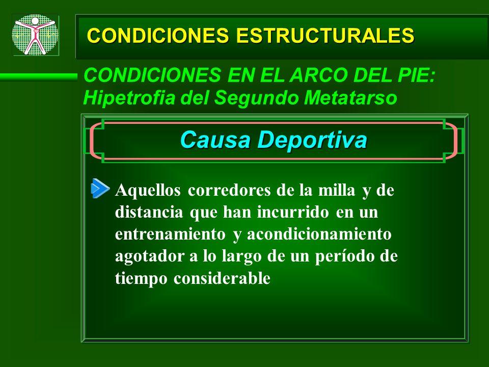 CONDICIONES ESTRUCTURALES CONDICIONES EN EL ARCO DEL PIE: Hipetrofia del Segundo Metatarso Causa Deportiva Aquellos corredores de la milla y de distan