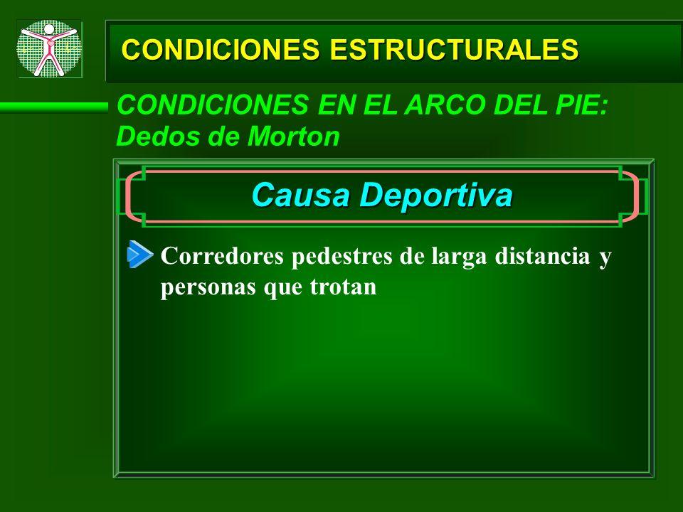 CONDICIONES ESTRUCTURALES CONDICIONES EN EL ARCO DEL PIE: Dedos de Morton Causa Deportiva Corredores pedestres de larga distancia y personas que trota
