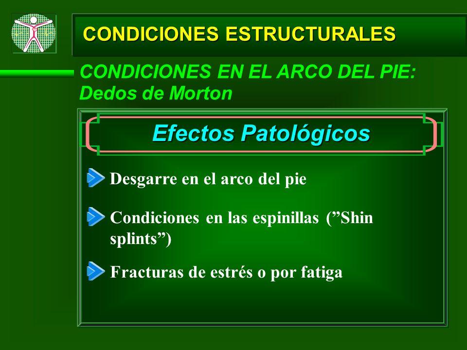 CONDICIONES ESTRUCTURALES CONDICIONES EN EL ARCO DEL PIE: Dedos de Morton Efectos Patológicos Desgarre en el arco del pie Condiciones en las espinilla