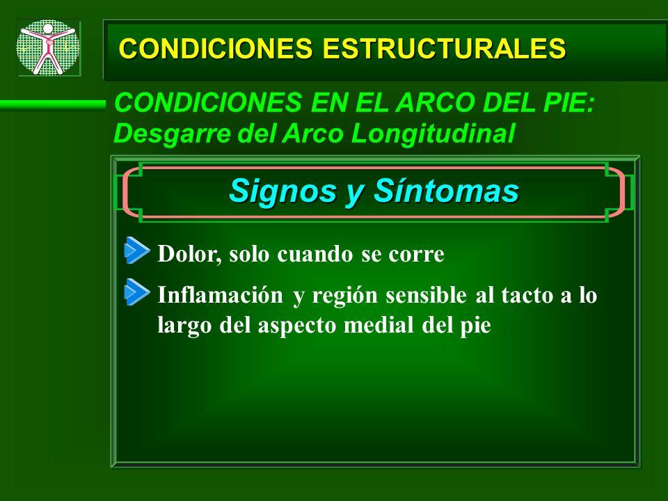 CONDICIONES ESTRUCTURALES Signos y Síntomas Dolor, solo cuando se corre CONDICIONES EN EL ARCO DEL PIE: Desgarre del Arco Longitudinal Inflamación y r