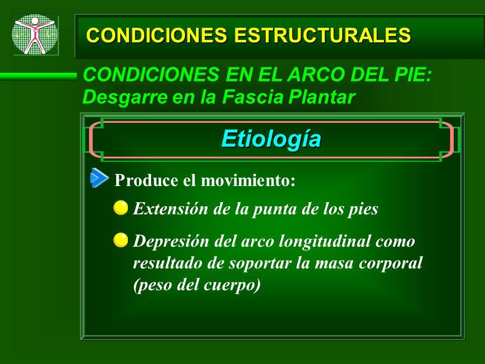 CONDICIONES ESTRUCTURALES CONDICIONES EN EL ARCO DEL PIE: Desgarre en la Fascia Plantar Etiología Produce el movimiento: Extensión de la punta de los
