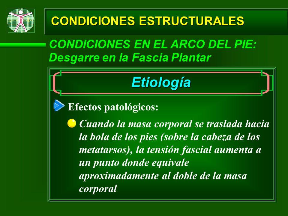 CONDICIONES ESTRUCTURALES CONDICIONES EN EL ARCO DEL PIE: Desgarre en la Fascia Plantar Etiología Efectos patológicos: Cuando la masa corporal se tras