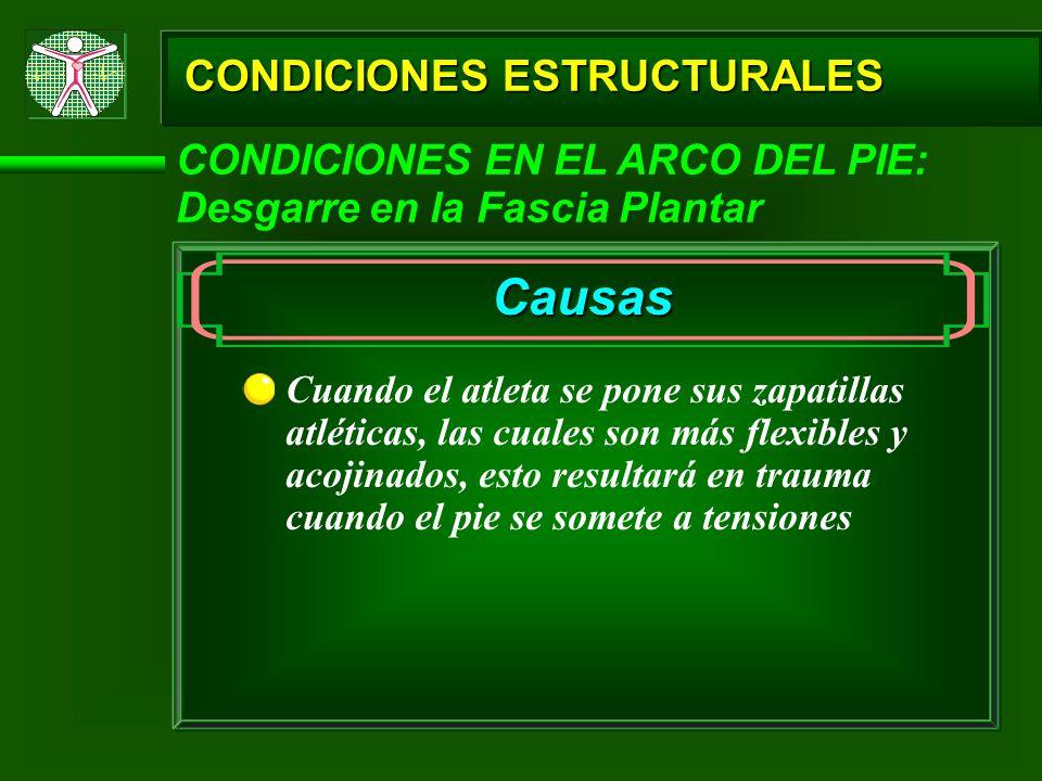CONDICIONES ESTRUCTURALES CONDICIONES EN EL ARCO DEL PIE: Desgarre en la Fascia Plantar Causas Cuando el atleta se pone sus zapatillas atléticas, las