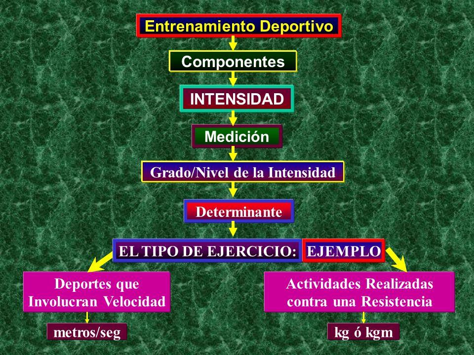 Entrenamiento Deportivo Componentes INTENSIDAD Medición Determinante Deportes que Involucran Velocidad Grado/Nivel de la Intensidad EL TIPO DE EJERCIC