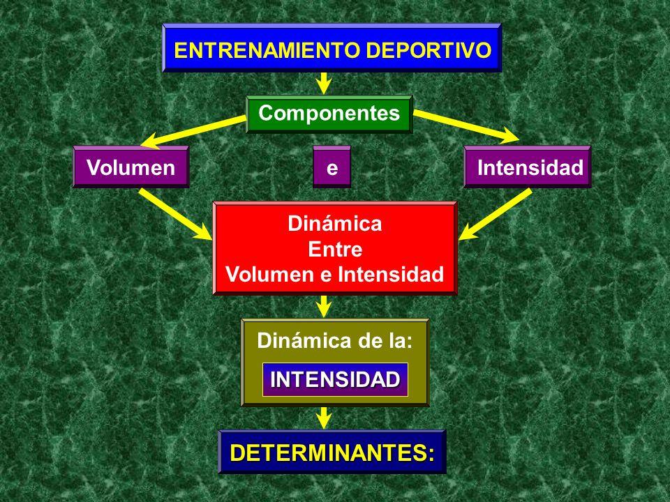 ENTRENAMIENTO DEPORTIVO Componentes VolumenIntensidade Dinámica Entre Volumen e Intensidad Dinámica de la: INTENSIDAD DETERMINANTES:
