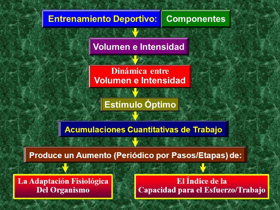 Entrenamiento Deportivo:Componentes Volumen e Intensidad Dinámica entre Volumen e Intensidad Estímulo Óptimo Acumulaciones Cuantitativas de Trabajo Pr