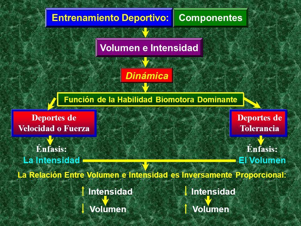 Entrenamiento Deportivo:Componentes Volumen e Intensidad Dinámica Función de la Habilidad Biomotora Dominante Deportes de Velocidad o Fuerza Deportes