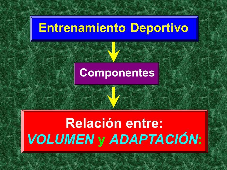 Componentes Entrenamiento Deportivo Relación entre: VOLUMEN y ADAPTACIÓN: