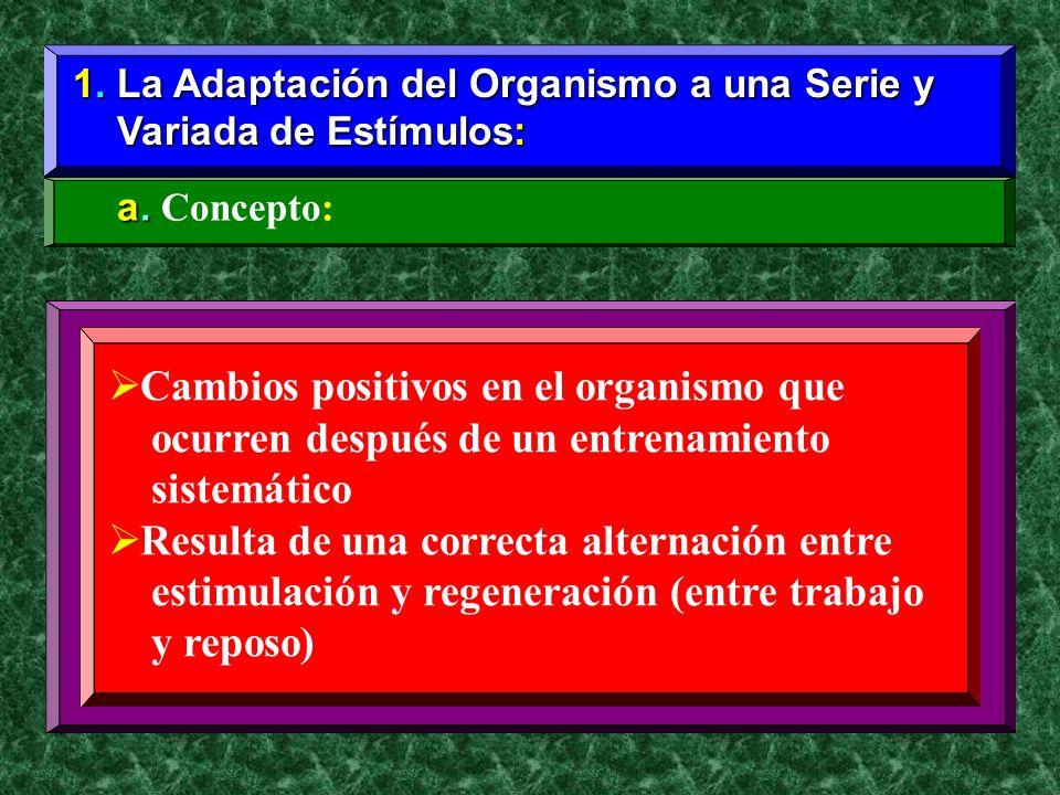 1. La Adaptación del Organismo a una Serie y Variada de Estímulos: Variada de Estímulos: a. a. Concepto: Cambios positivos en el organismo que ocurren