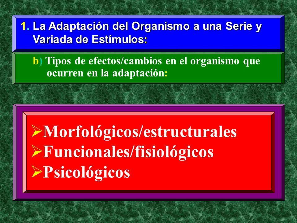 1. La Adaptación del Organismo a una Serie y Variada de Estímulos: Variada de Estímulos: b) Tipos de efectos/cambios en el organismo que ocurren en la