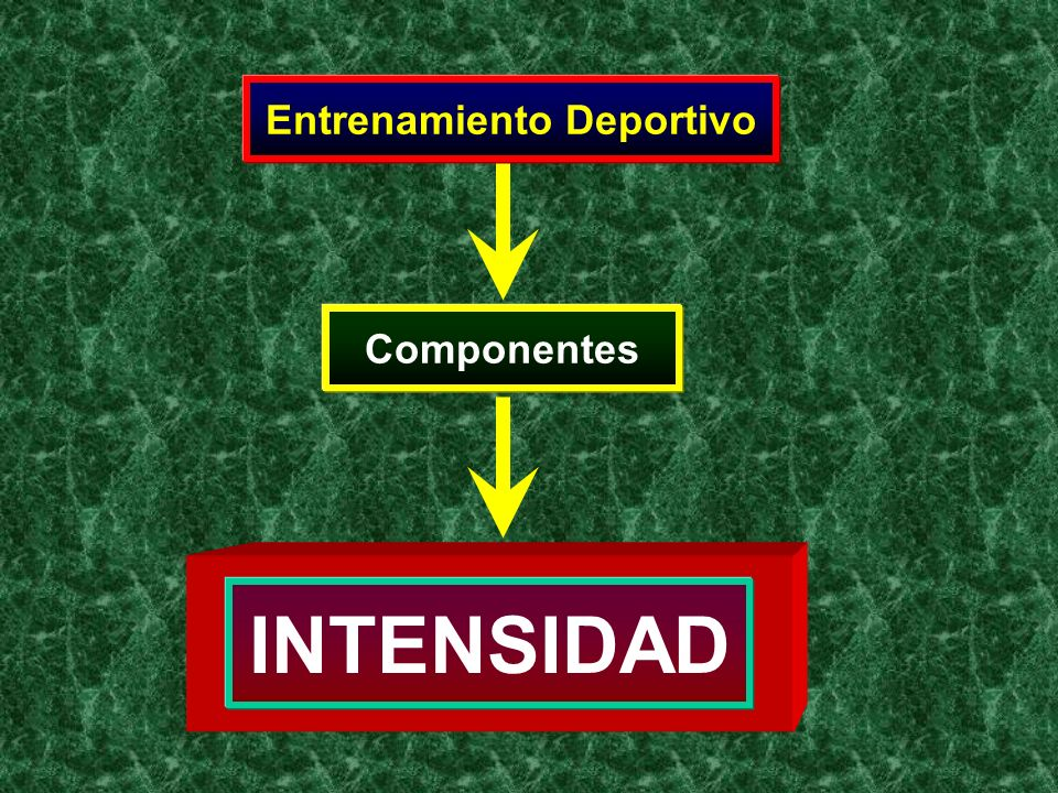 La fuerza del estímulo nervioso empleado durante el entrenamiento El componente cualitativo del trabajo realizado durante un periodo de tiempo dado: Componentes: Concepto Trabajo Realizado por Unidad de Tiempo Intensidad