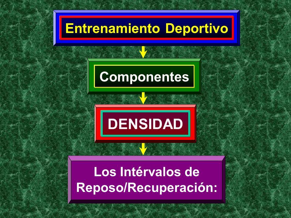 Entrenamiento Deportivo Componentes DENSIDAD Los Intérvalos de Reposo/Recuperación: