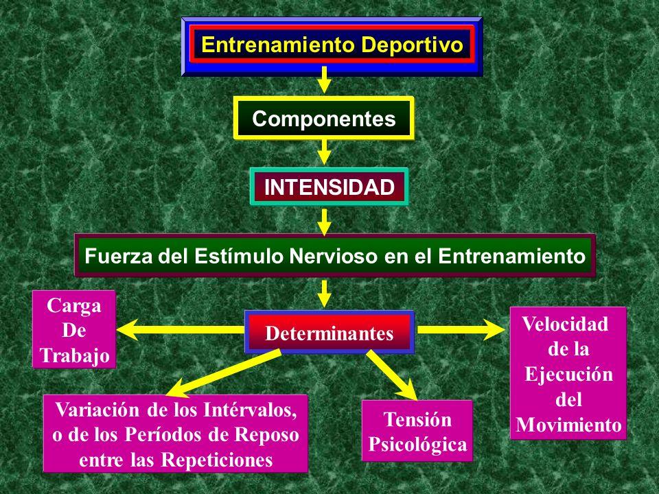 Entrenamiento Deportivo Componentes INTENSIDAD Fuerza del Estímulo Nervioso en el Entrenamiento Determinantes Carga De Trabajo Variación de los Intérv