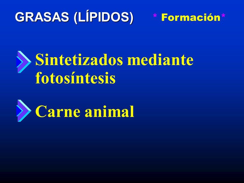 GRASAS (LÍPIDOS) * Funciones* Fuente de energía Protege los órganos vitales del cuerpo Insulación Portador de la Vitaminas A, D, E, K Reduce las ansias de hambre Fuente de ácidos esenciales Regulador del cuerpo
