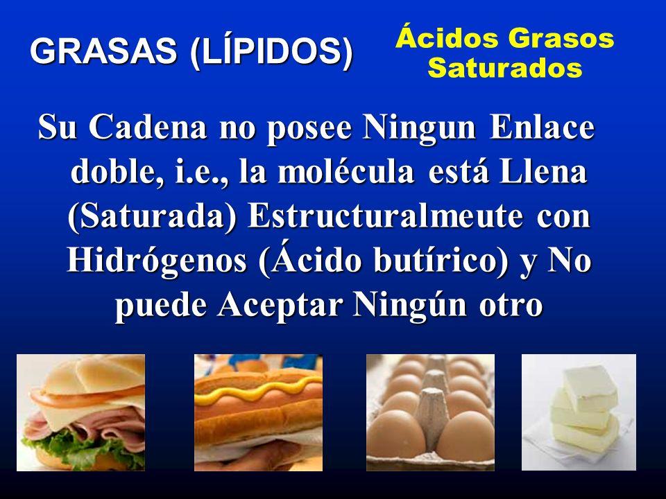 Representan la forma de almacenamiento de los ácidos grasos libres en el tejido adiposo (dentro de las células grasas o adipositos) y músculos esqueléticos GRASAS (LÍPIDOS) Grasas Simples o Neutras Triglicéridos