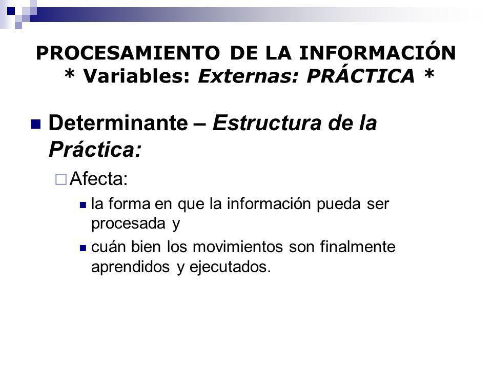 PROCESAMIENTO DE LA INFORMACIÓN * Variables: Externas: PRÁCTICA * Determinante – Estructura de la Práctica: Afecta: la forma en que la información pue