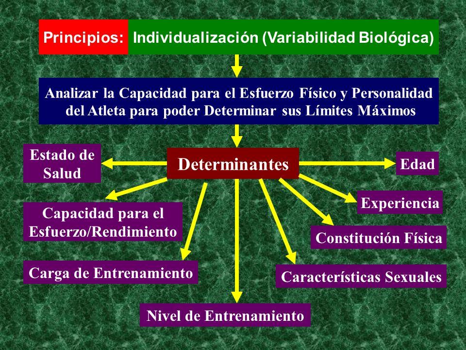 Principios:Individualización (Variabilidad Biológica) Analizar la Capacidad para el Esfuerzo Físico y Personalidad del Atleta para poder Determinar su