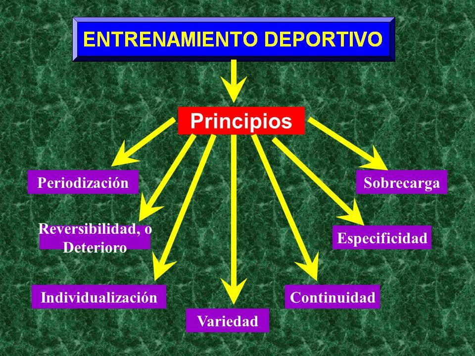 Periodización Principios Reversibilidad, o Deterioro Individualización Variedad Sobrecarga Especificidad Continuidad
