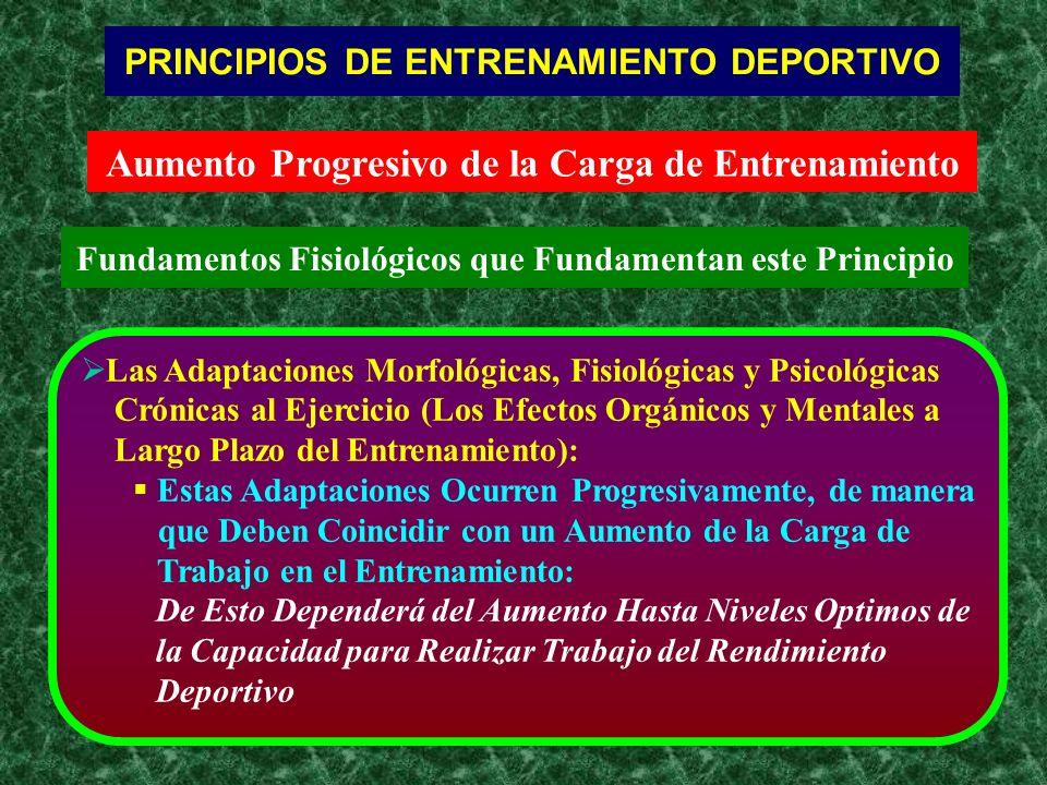 Aumento Progresivo de la Carga de Entrenamiento Fundamentos Fisiológicos que Fundamentan este Principio PRINCIPIOS DE ENTRENAMIENTO DEPORTIVO Las Adap