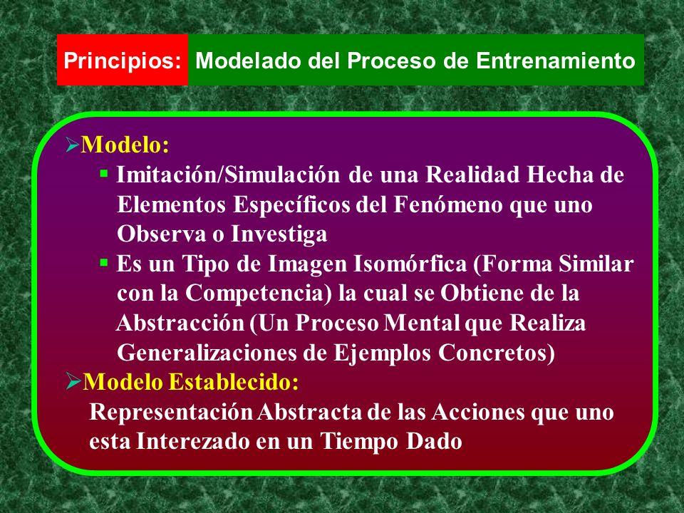 Principios:Modelado del Proceso de Entrenamiento Modelo: Imitación/Simulación de una Realidad Hecha de Elementos Específicos del Fenómeno que uno Obse
