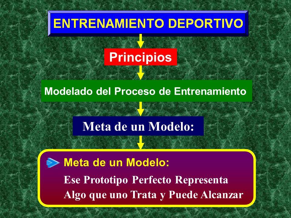 Meta de un Modelo: Principios Modelado del Proceso de Entrenamiento Meta de un Modelo: Ese Prototipo Perfecto Representa Algo que uno Trata y Puede Al