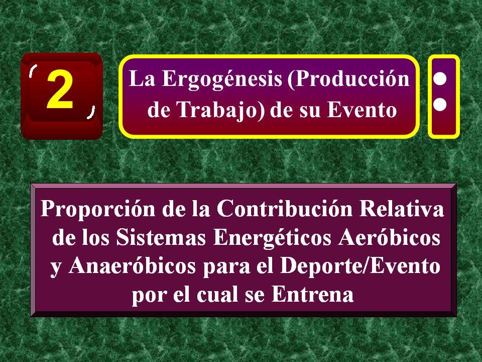 La Ergogénesis (Producción de Trabajo) de su Evento 2 :