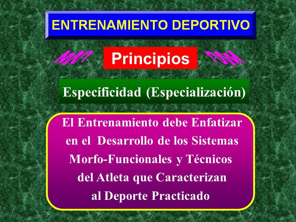 La Prioridad de Atender el Desarrollo de los Sistemas Energéticos Principales Envueltos en el Deporte Dirigir el Proceso de Entrenamiento hacia el Desarrollo de las Destrezas Básicas Requeridas para Competir en el Deporte/Evento que se Practica Implementación de Ejercicios que Desarrollen los Músculos Motores Principales Envueltos en el Movimiento Particular que Caracteriza su Deporte Principios: Especificidad