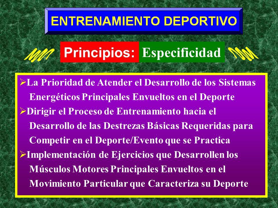 La Prioridad de Atender el Desarrollo de los Sistemas Energéticos Principales Envueltos en el Deporte Dirigir el Proceso de Entrenamiento hacia el Des