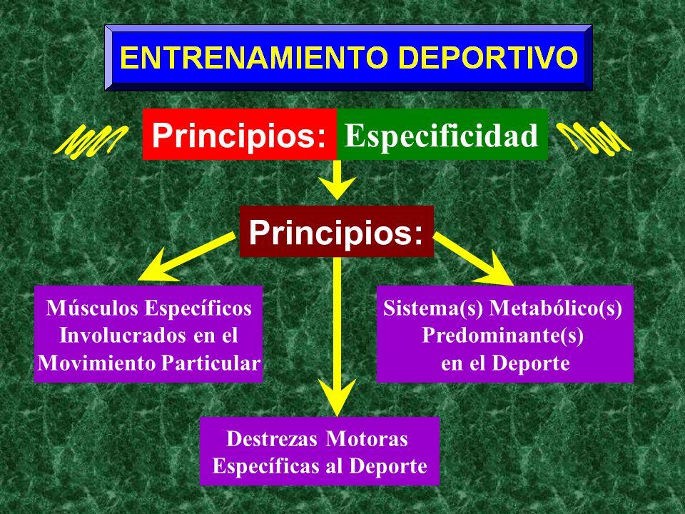 Principios: Especificidad Músculos Específicos Involucrados en el Movimiento Particular Principios: Sistema(s) Metabólico(s) Predominante(s) en el Dep