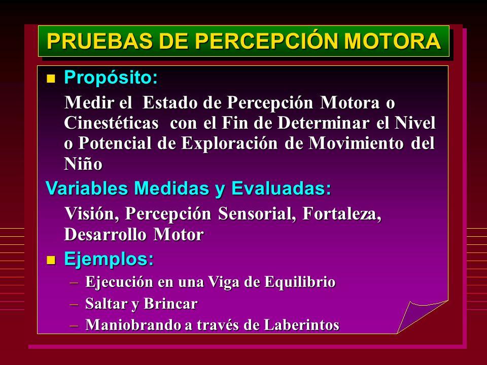 PRUEBAS DE PERCEPCIÓN MOTORA Propósito: Propósito: Medir el Estado de Percepción Motora o Cinestéticas con el Fin de Determinar el Nivel o Potencial d