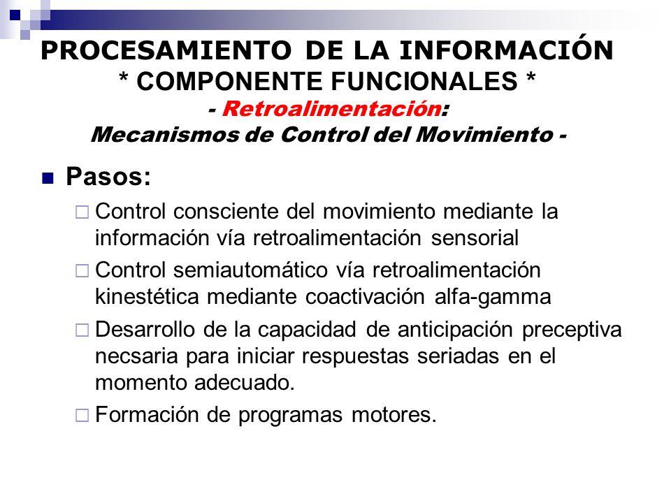 PROCESAMIENTO DE LA INFORMACIÓN * COMPONENTE FUNCIONALES * - Retroalimentación: Mecanismos de Control del Movimiento - Pasos: Control consciente del m