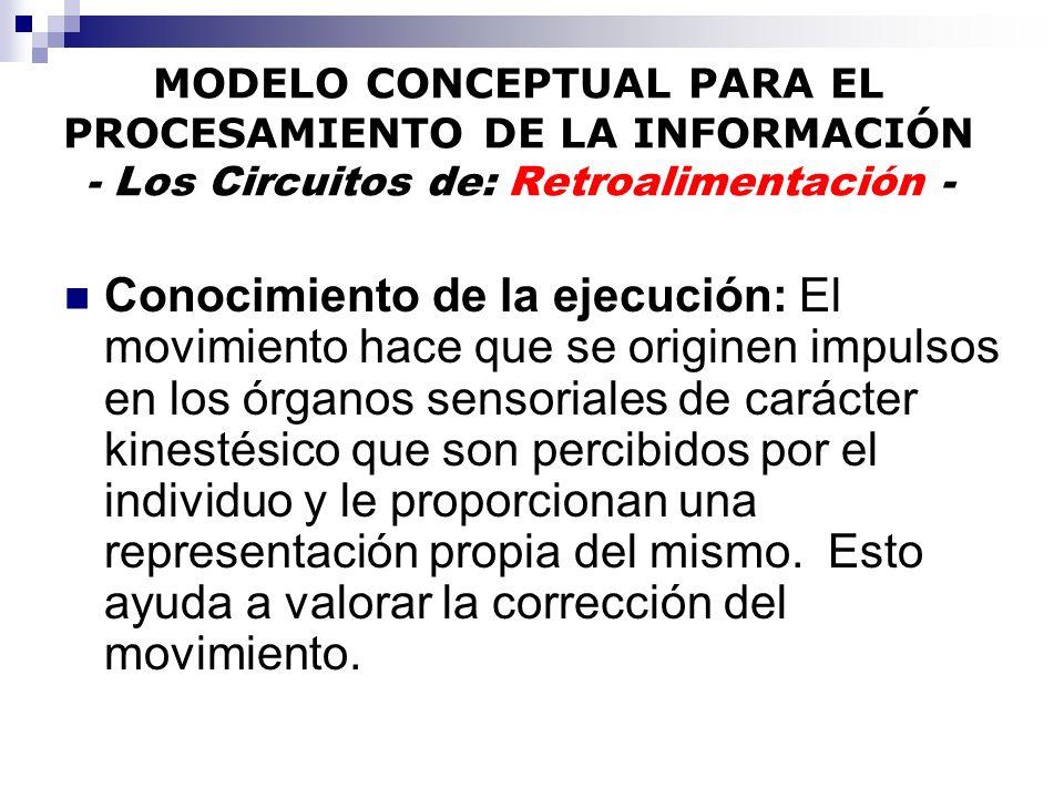 MODELO CONCEPTUAL PARA EL PROCESAMIENTO DE LA INFORMACIÓN - Los Circuitos de: Retroalimentación - Conocimiento de la ejecución: El movimiento hace que