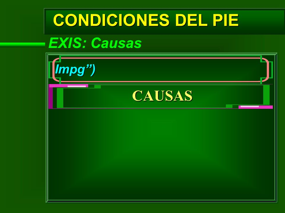 CONDICIONES DEL PIE EXIS: Causas Impg) CAUSAS