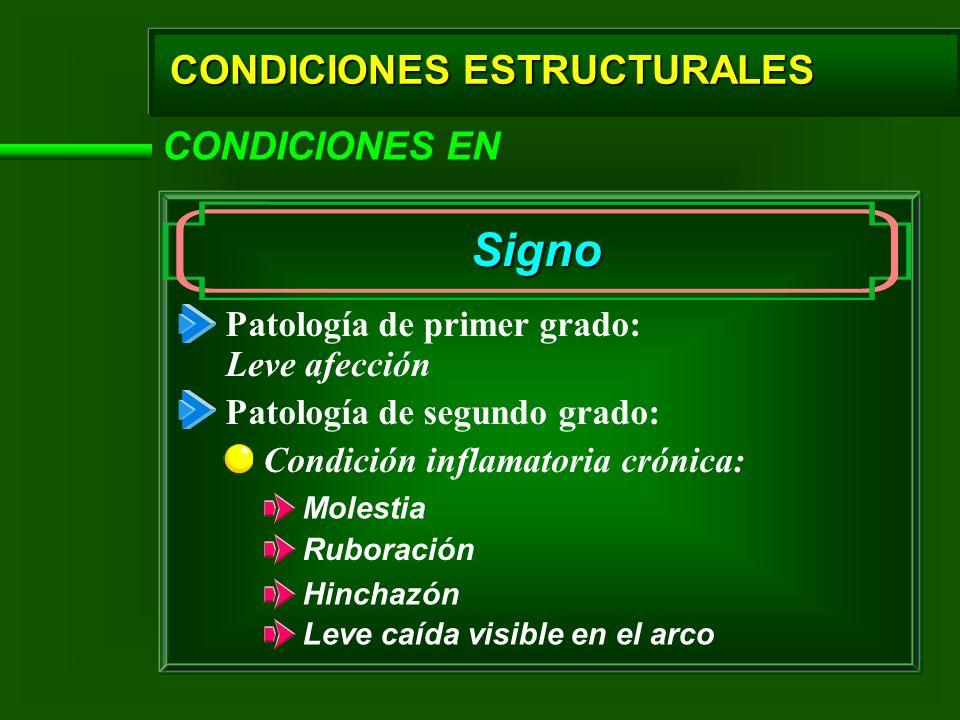 CONDICIONES ESTRUCTURALES CONDICIONES EN Signo Patología de primer grado: Patología de segundo grado: Condición inflamatoria crónica: Leve afección Mo