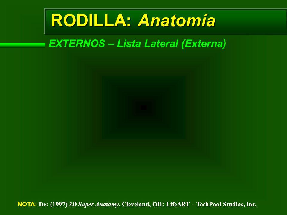 RODILLA: Anatomía EXTERNOS – Lista Lateral (Externa) NOTA: De: (1997) 3D Super Anatomy. Cleveland, OH: LifeART – TechPool Studios, Inc.