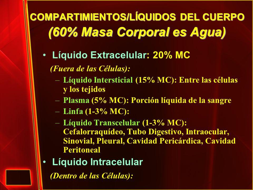 COMPARTIMIENTOS/LÍQUIDOS DEL CUERPO (60% Masa Corporal es Agua) Líquido Extracelular: 20% MC (Fuera de las Células): –Líquido Intersticial (15% MC): E