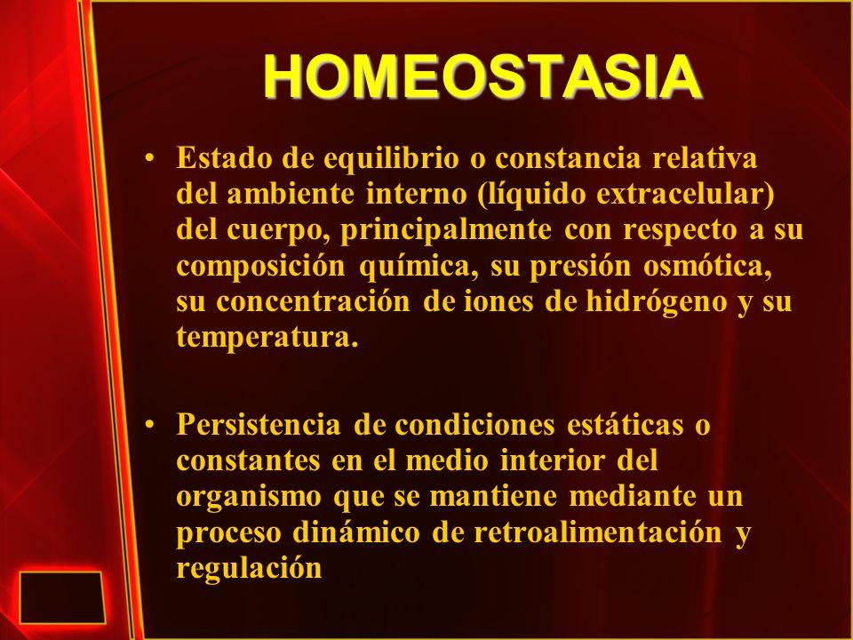 HOMEOSTASIA: Características El medio ambiente interior/líquido extracelular se mantiene en condiciones constantes a través de varios mecanismos del cuerpo.