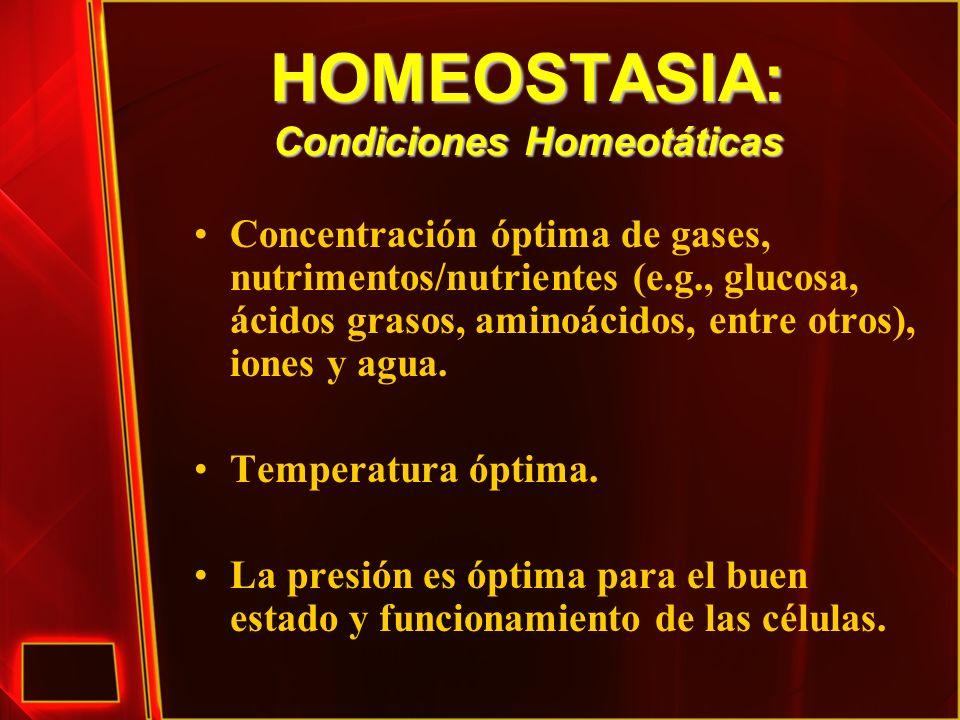 HOMEOSTASIA: Condiciones Homeotáticas Concentración óptima de gases, nutrimentos/nutrientes (e.g., glucosa, ácidos grasos, aminoácidos, entre otros),