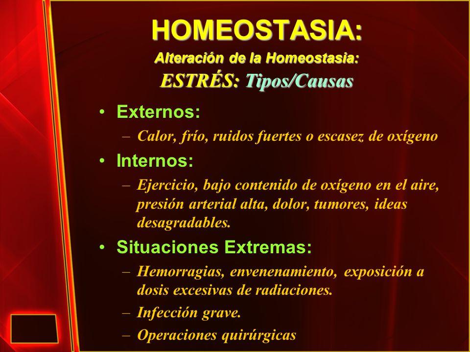 HOMEOSTASIA: Alteración de la Homeostasia: ESTRÉS: Tipos/Causas Externos: –Calor, frío, ruidos fuertes o escasez de oxígeno Internos: –Ejercicio, bajo