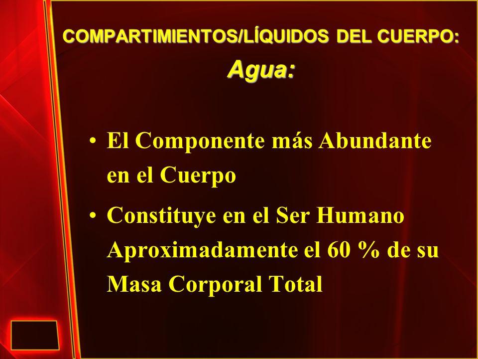 COMPARTIMIENTOS/LÍQUIDOS DEL CUERPO: Agua: El Componente más Abundante en el Cuerpo Constituye en el Ser Humano Aproximadamente el 60 % de su Masa Cor