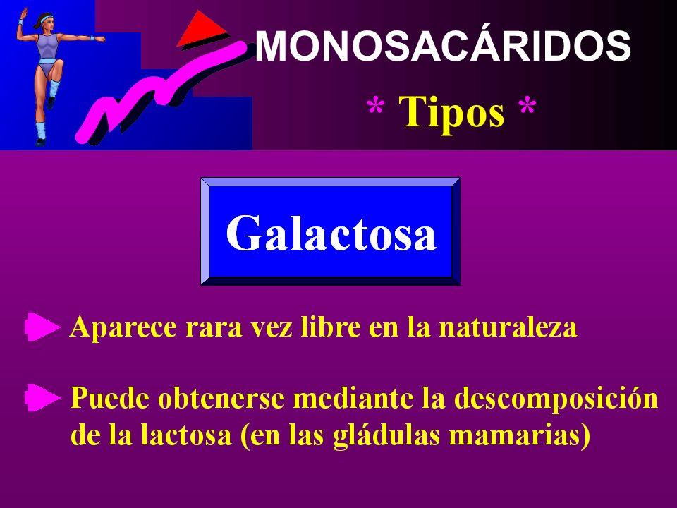 MONOSACÁRIDOS * Tipos * Se halla con la glucosa en Muchas frutas y verduras, Sobre todo en la miel