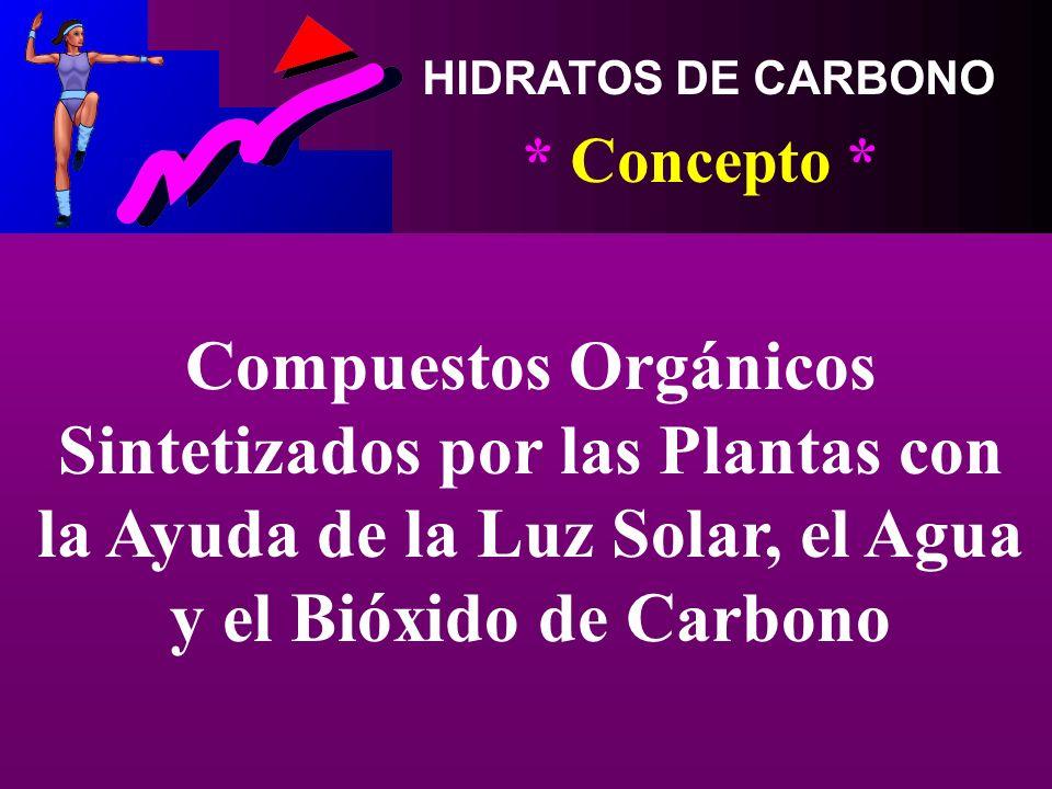 HIDRATOS DE CARBONO Edgar Lopategui Corsino M.A., Fisiología del Ejercicio