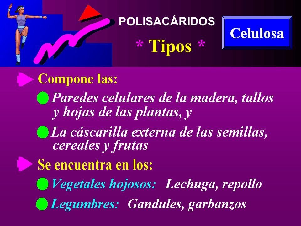 POLISACÁRIDOS * Tipos *