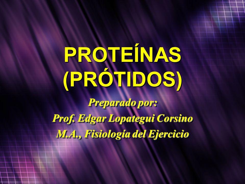PROTEÍNAS (PRÓTIDOS) Preparado por: Prof. Edgar Lopategui Corsino M.A., Fisiología del Ejercicio Preparado por: Prof. Edgar Lopategui Corsino M.A., Fi